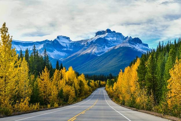 A estrada 93 linda