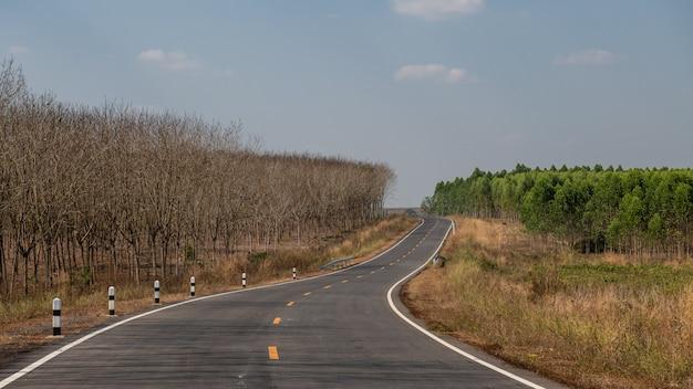 A estrada através da plantação de seringueira na tailândia