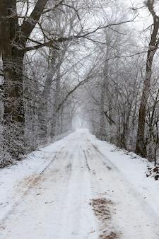 A estrada fica coberta de neve no inverno