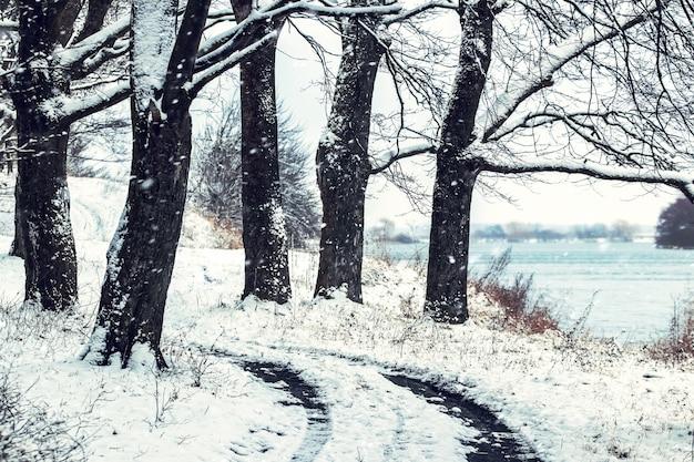 A estrada na margem do rio entre as árvores durante a queda de neve no inverno