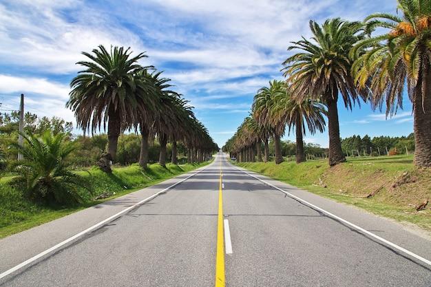 A estrada para colonia del sacramento, uruguai