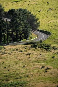 A estrada rural vazia vira à esquerda