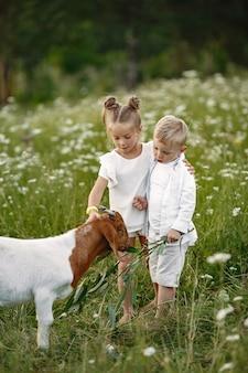 A família passa o tempo de férias na aldeia. menino e menina brincando na natureza.