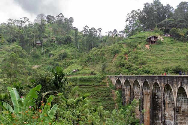 A famosa ponte de nove arcos da ferrovia na selva no sri lanka