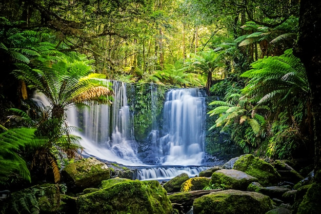 A, ferradura, quedas, em, a, mt, campo, parque nacional, tasmânia, austrália