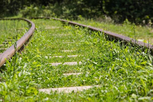 A ferrovia da montanha sai pela floresta além do horizonte.