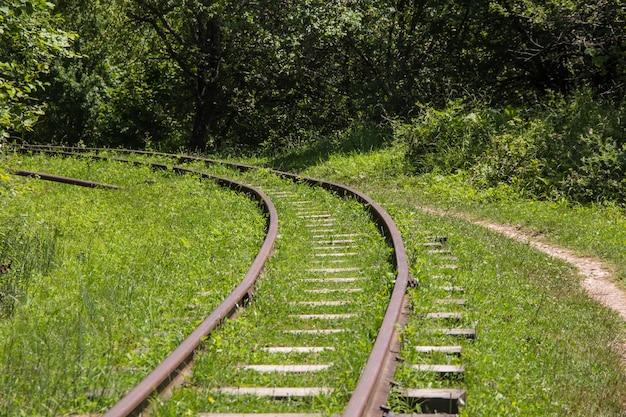 A ferrovia da montanha sai pela floresta