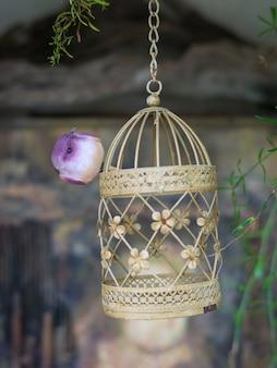 A figura de um pequeno pássaro roxo em uma gaiola suspensa. manter os pássaros em casa.