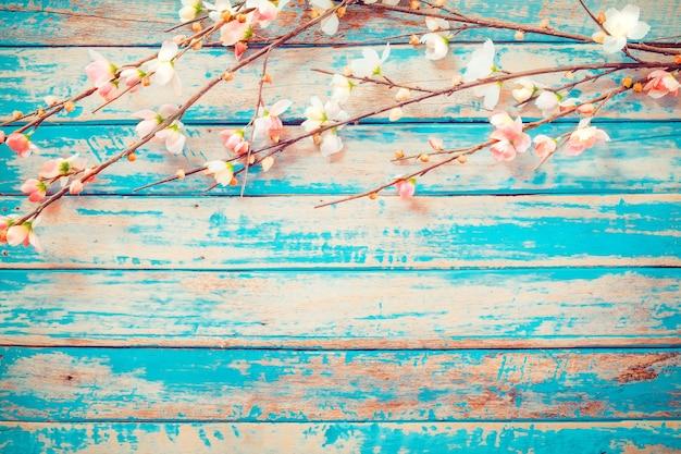 A flor de cerejeira floresce no fundo de madeira do vintage, projeto da beira. tom da cor do vintage - flor do conceito da mola ou do fundo do verão