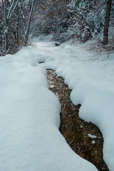 A floresta de inverno sob neve com rio congelado paisagem sazonal