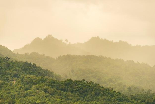 A floresta de montanhas tropicais na tailândia