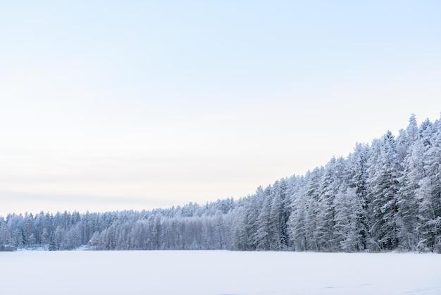 A floresta no lago do gelo cobriu com as nevadas fortes e o céu na estação do inverno em lapland, finlandia.