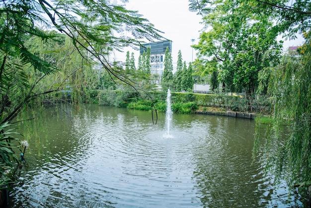A fonte em bem com árvores e plantas verdes