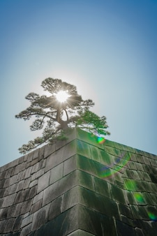 A fundação de uma torre do castelo do castelo edo-jo, japão