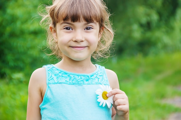 A garota está segurando flores de camomila em suas mãos. foco seletivo.