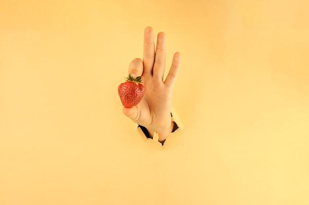 A garota segura com os dedos um morango vermelho maduro. a mão de uma mulher em papel rasgado segura uma baga. conceito de compras online.