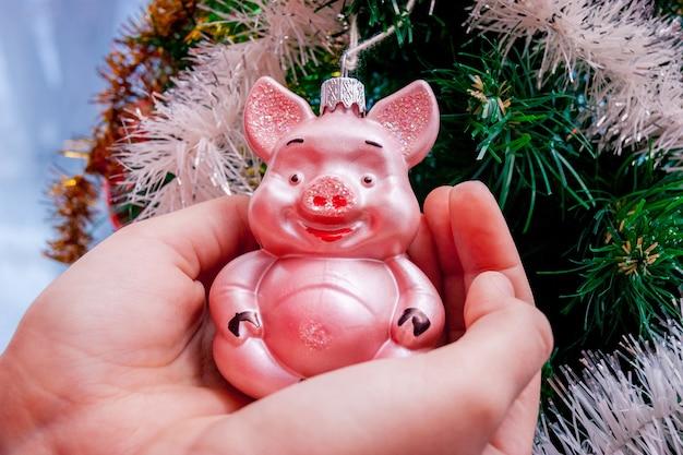 A garota segura uma decoração de natal na forma de um porco. feriado de natal e ano novo_