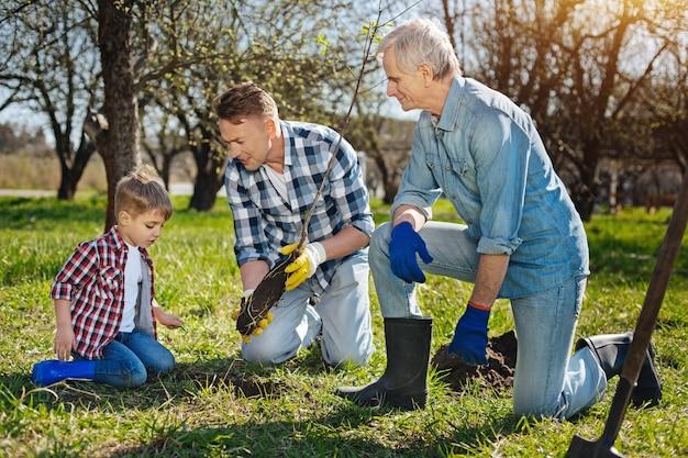 A geração masculina mais velha mostra a um garotinho fofo como pensar no ambiente natural ao definir uma árvore frutífera em um jardim familiar