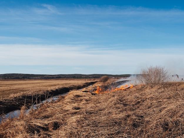 A grama seca queima no campo em clima quente. incêndios florestais perigosos, desastre. fosso com água, prevenção de incêndios, equipamento de segurança contra incêndios.