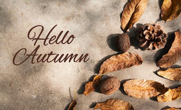 A inscrição hello autumn em um fundo de concreto com folhas caídas