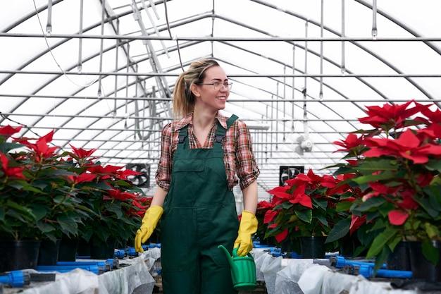 A jardineira alegre e sorridente atravessa a estufa cheia de flores de amendoim vermelhas
