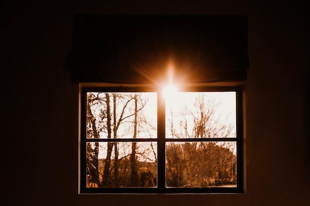 A luz e a sombra do clima da manhã ou do pôr do sol. a luz exótica passa através da árvore, a sombra e o raio de luz aparecem em cena. conceito de plano de fundo manhã ou pôr do sol.