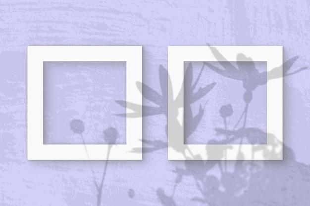 A luz natural projeta sombras de flores de alcachofra de jerusalém em 2 molduras quadradas de papel texturizado branco