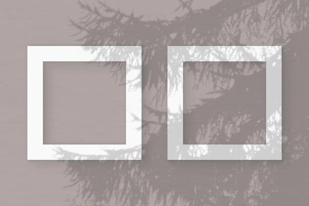 A luz natural projeta sombras de um galho de abeto em 2 molduras quadradas de papel texturizado branco