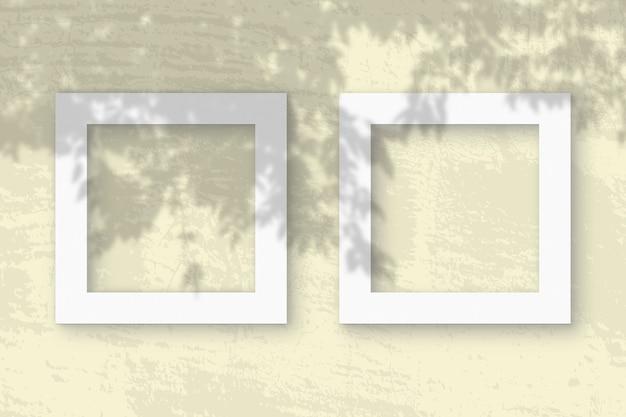 A luz natural projeta sombras de um galho de macieira em 2 molduras quadradas