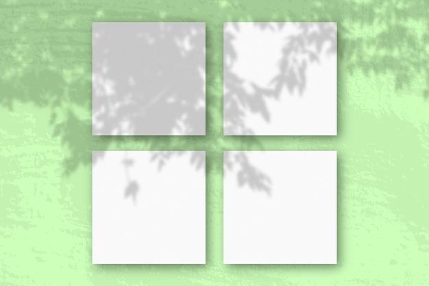 A luz natural projeta sombras de um galho de macieira em 3 folhas quadradas