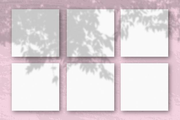 A luz natural projeta sombras de um galho de macieira em folhas quadradas de papel texturizado branco
