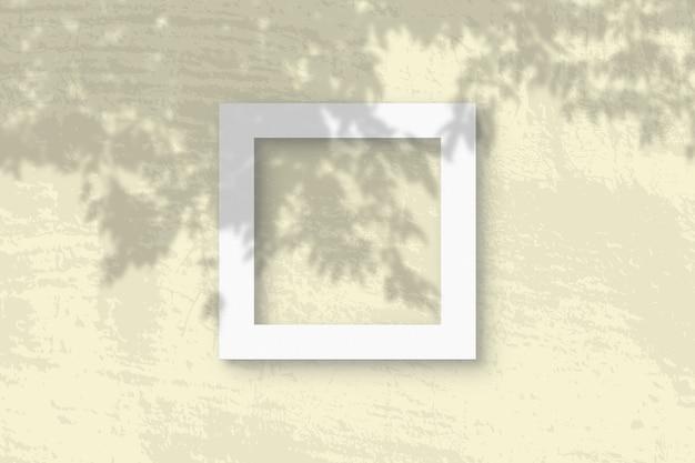 A luz natural projeta sombras de um galho de macieira
