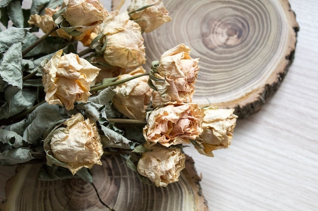 A madeira cortada com rosas secas; rosas secas em uma árvore cortada. decoração vintage