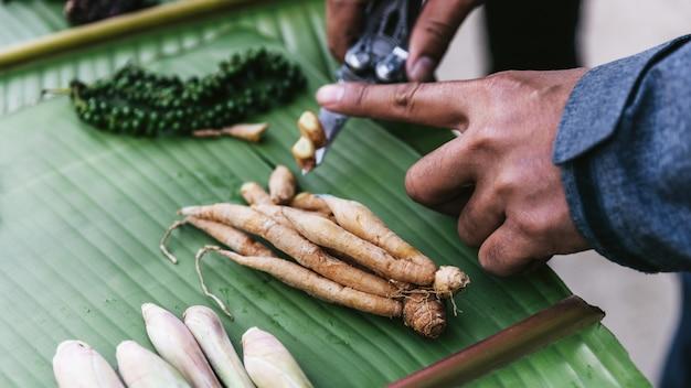 A mão cortou o gengibre fresco pela faca e muitas especiarias nas folhas da banana.