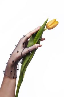 A mão da mulher bonita em uma luva elegante segurando uma flor no fundo branco