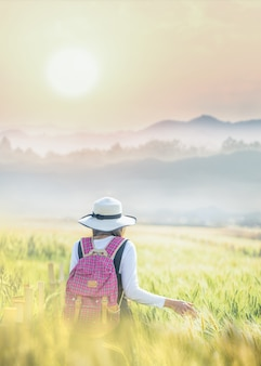A mão da mulher do viajante que toca no trigo no campo com fundo das montanhas da vista.