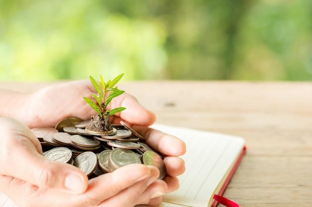 A mão da mulher está segurando muitas moedas