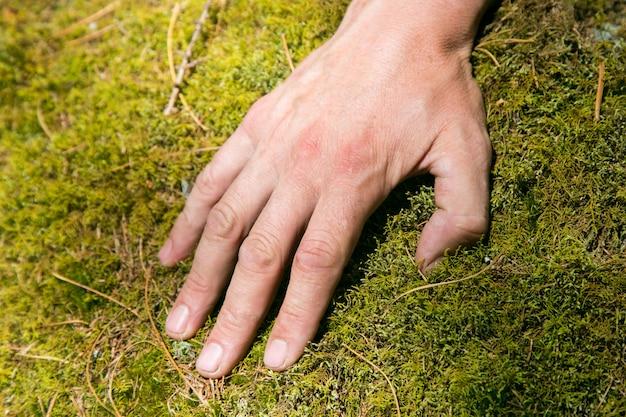 A mão de um homem no musgo.