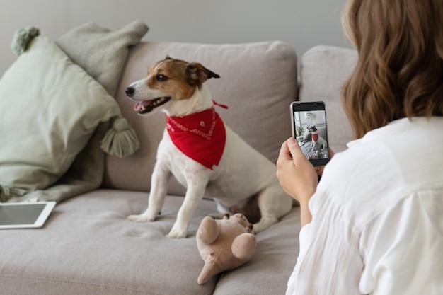 A mão de uma mulher segura um smartphone e tira a foto de um cachorrinho.
