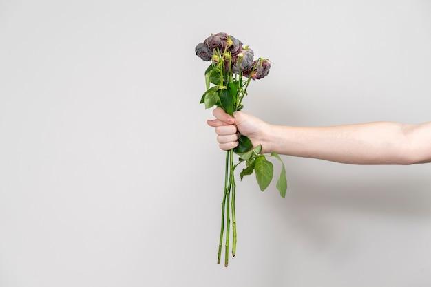 A mão do homem estende um buquê de flores murchas e mostra um figo