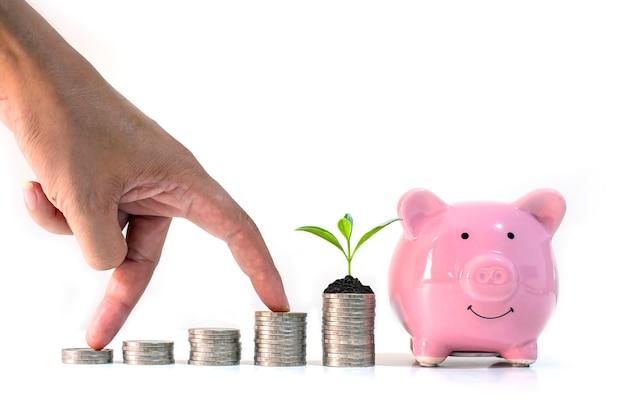 A mão do investidor masculino é colocada em uma pilha de moedas e árvores crescendo em uma pilha de moedas e cofrinho no fundo branco