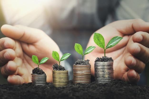 A mão protege a pilha do dinheiro com a planta que cresce em moedas. finanças do conceito