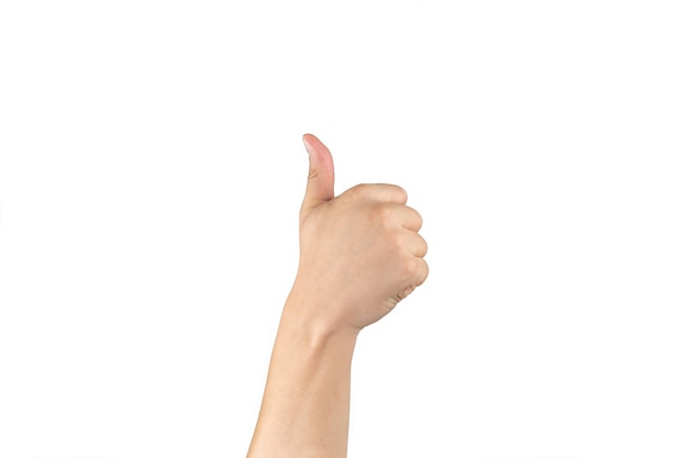 A mão traseira asiática mostra e conta 6 (seis) sinais no dedo em fundo branco isolado com traçado de recorte