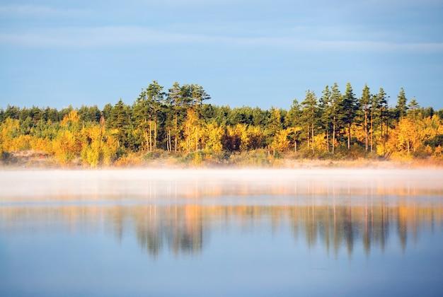 A margem do lago enevoado no início da manhã iluminada