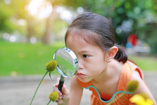 A menina asiática consideravelmente pequena da criança com lupa olha a flor no parque do verão.