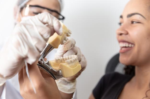A menina bonita nova está sorrindo ao olhar o modelo da maxila e dos dentes na classificação do dentista.