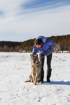 A menina e o lobo cinzento brincam juntos em um campo nevado e ensolarado no inverno