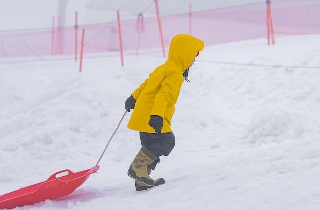A menina japonesa pequena está deslizando abaixo do trenó da neve na estância de esqui de gala yuzawa