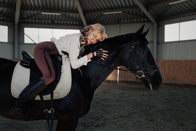A menina loura nova elegante bonita encontra-se no seu cavalo preto que veste-se a camisa branca da blusa da competição uniforme e as calças marrons.