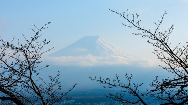 A montanha fuji no inverno emoldurada por uma árvore de outono seco na cor azul no japão